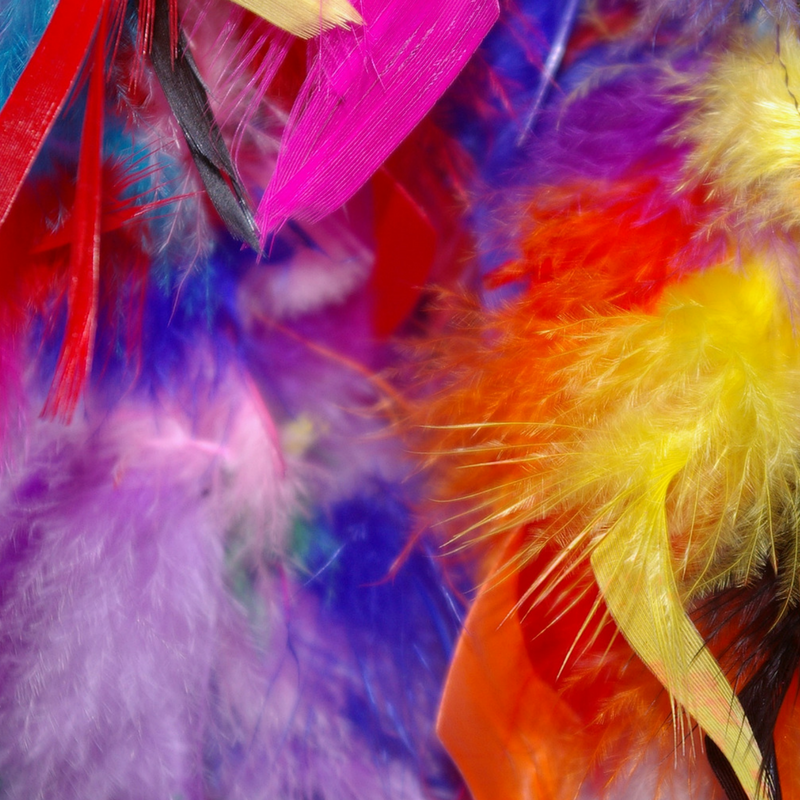 feathers yoga breath activity